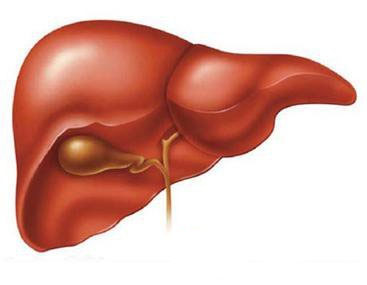 肝癌的三大误区
