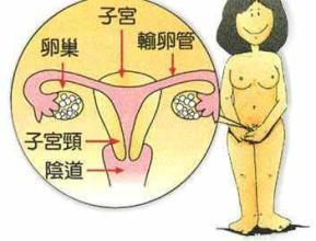 宫颈癌的放射治疗分析