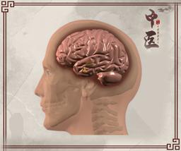 中医分型治疗脑瘤