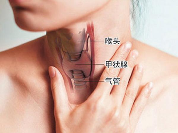 http://www.wd999.com/jiazhuangxianai/zhuanyi/50462.html