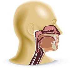 鼻咽癌患者的全面护理