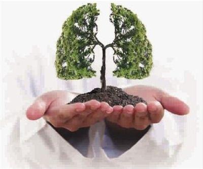 肺癌病因的介绍