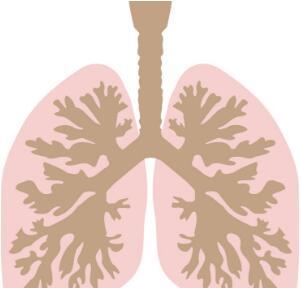 治疗肺癌的手术方式