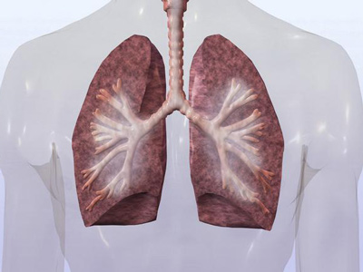 肺癌的综合治疗方式