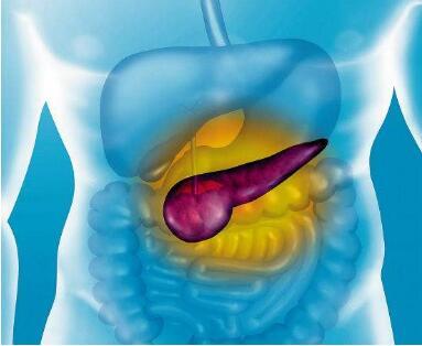 胰腺癌扩散后活多久