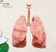 非小细胞肺癌常见治疗手段
