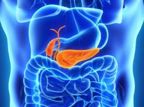 胰腺癌晚期怎样治疗好