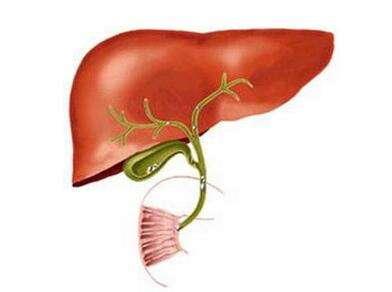 胆管癌手术治疗怎么样