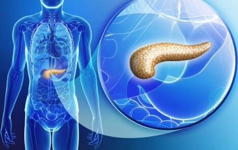 胰腺癌中医保守治疗