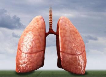 中医治疗肺癌的类型