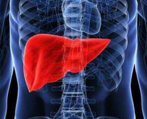 肝癌疾病的治疗类型
