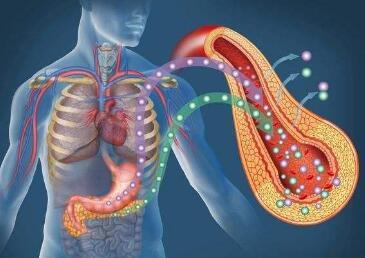 胰腺癌怎样治疗好