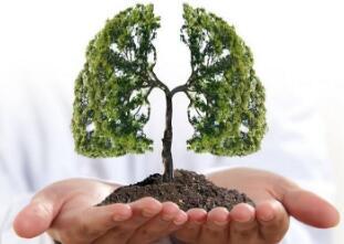 肺癌病人术后如何调理