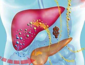 肝癌手术前的注意事项