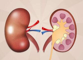 肾癌中晚期转移的治疗