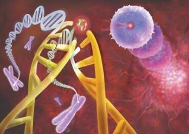 胰腺癌常见发病原因