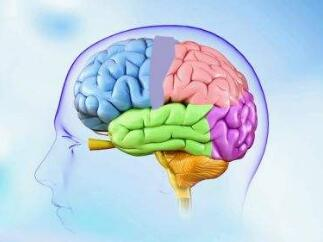 脑瘤手术该怎样进行医治