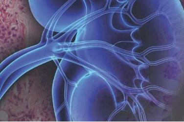 肾癌相关的治疗事项