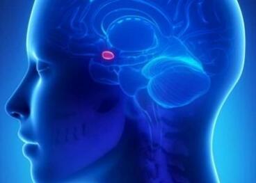 脑瘤的治疗方法选择