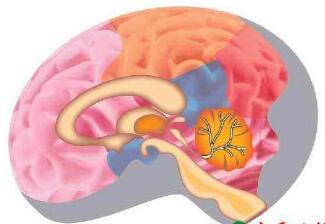 脑瘤该怎样配合治疗