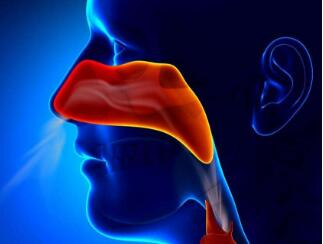 鼻咽癌化疗的效果怎样