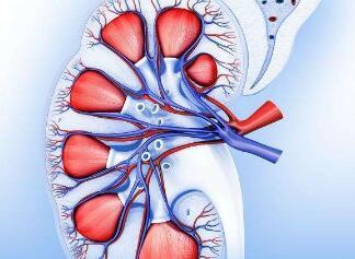 肾癌的常见治疗方法