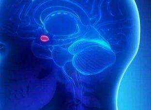 脑瘤中医辅助治疗的优势