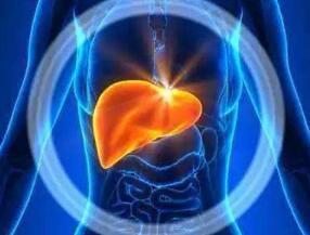 肝癌晚期病人生存周期