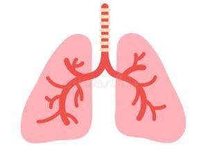 肺癌化疗的不良作用