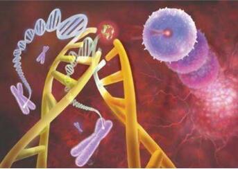 胰腺癌中医的治疗方式