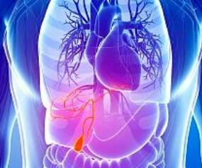 胆囊癌的手术治疗类型